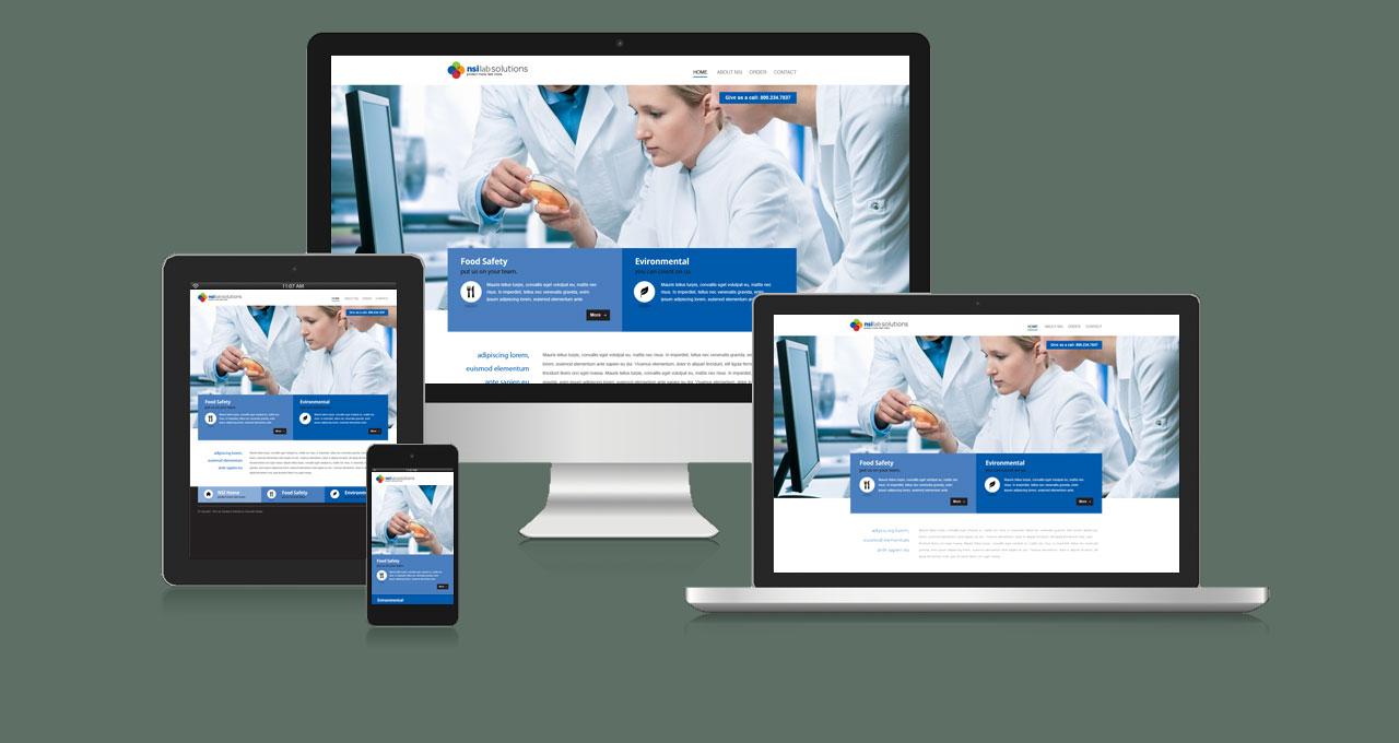 NSI Lab Solutions Website